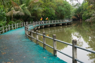 สะพานเขียว แหล่งโปรดปรานของนักปั่นท่องธรรมชาติ