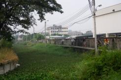 WongWanTrip-5