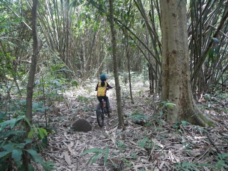 สุขใจ..ไปปั่นป่า #4