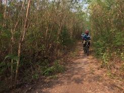 cycling-along-six-canal-5